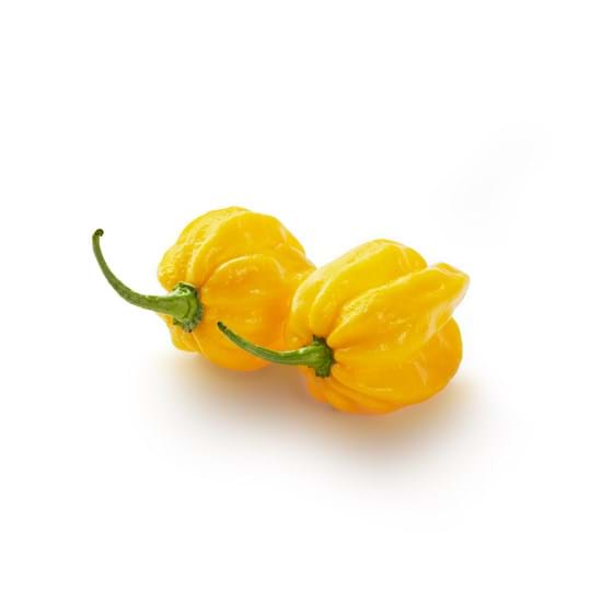 Habanero pepper - Product picture
