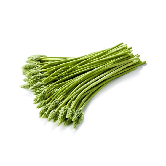 Wild asparagus - Product picture