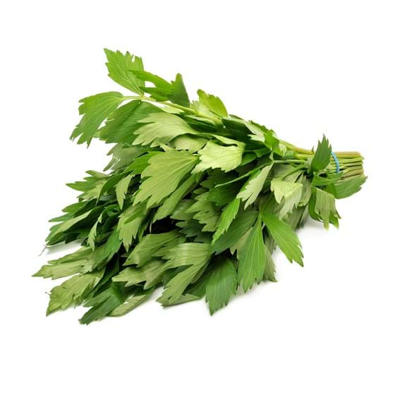 Lovage - Product picture