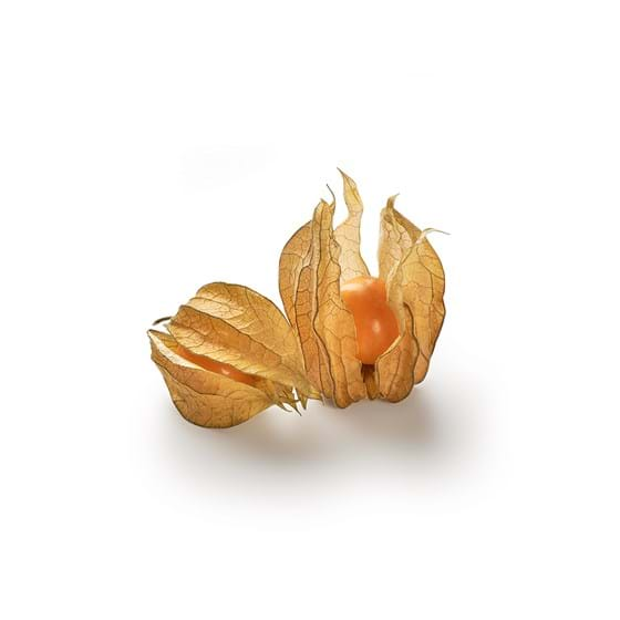Physalis - Product picture