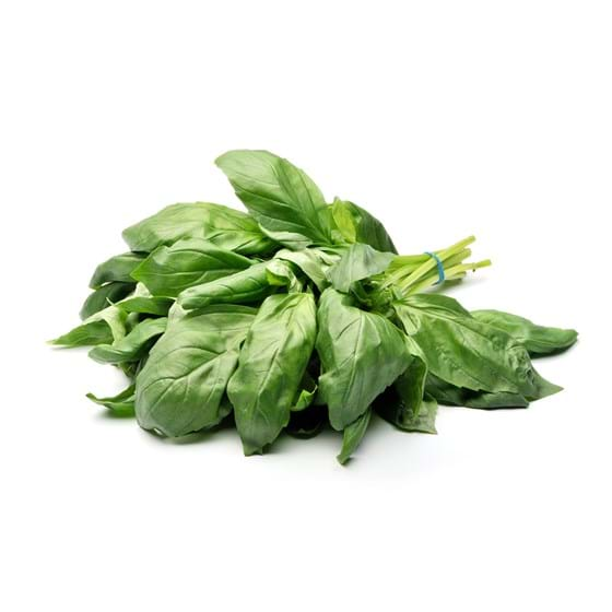Basil - Product photo