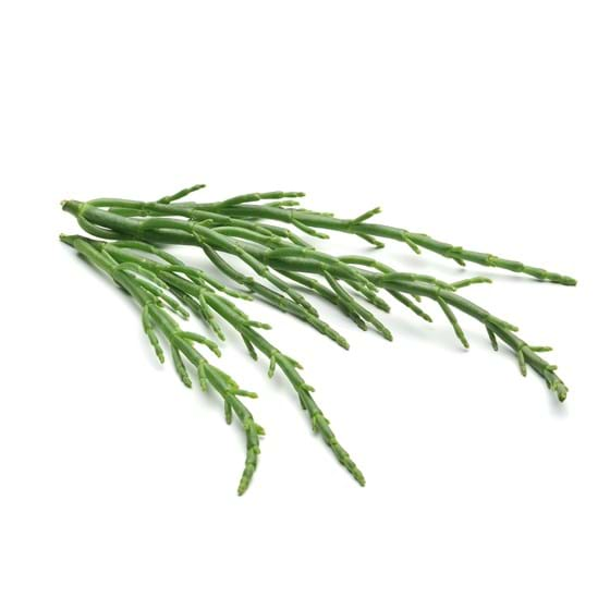 Samphire - Product photo