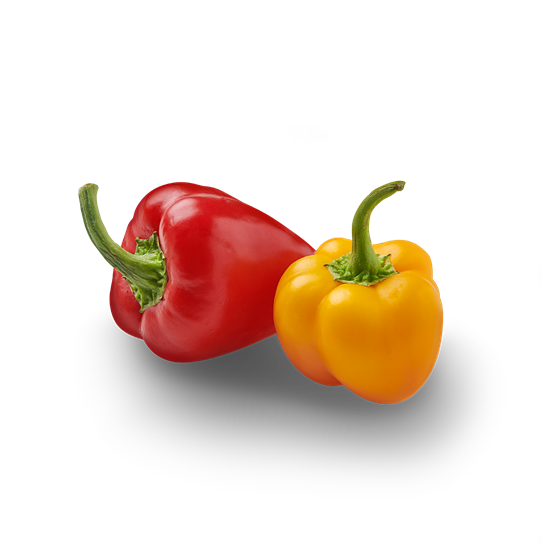 Mini Paprika - Productfoto