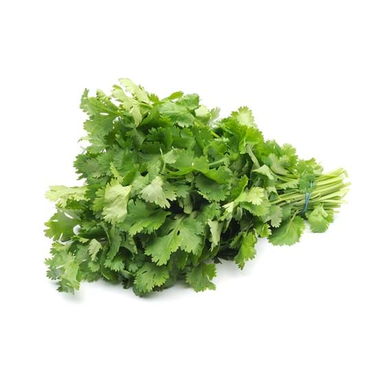 Coriander - Product photo